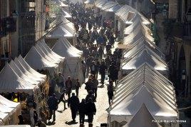 Fiera Nazionale del Marrone, Cuneo